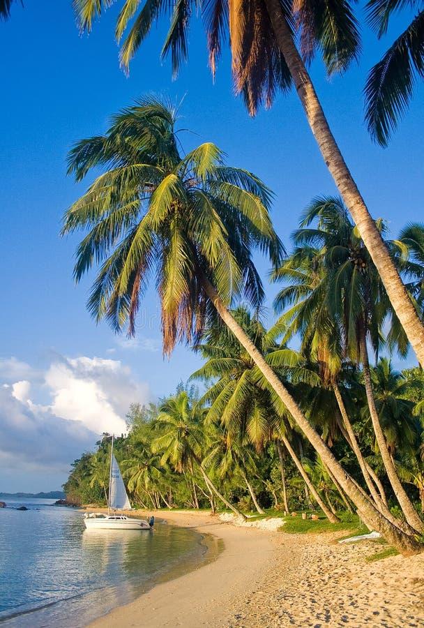 Paisagem tropical da praia imagens de stock