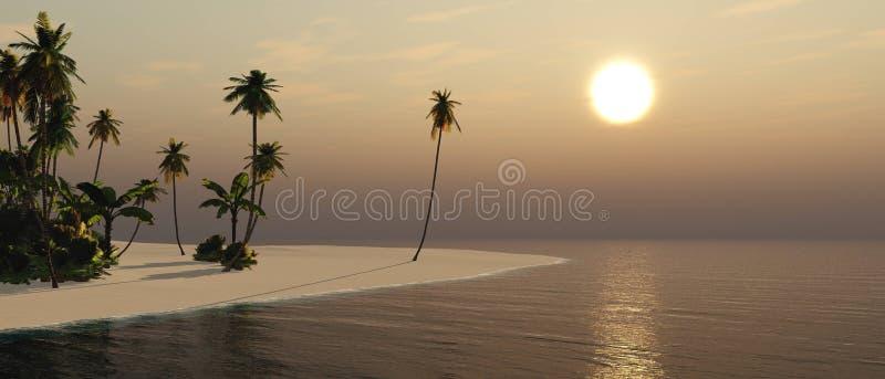 Paisagem tropical, praia com as palmeiras no por do sol imagens de stock
