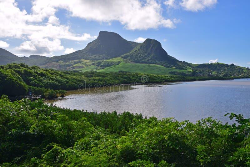 A paisagem verde com manguezais litorais molha e Lion Mountain Mahebourg próximo, Maurícias fotografia de stock