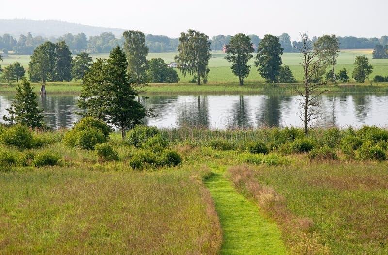 Paisagem verde do prado com trajeto e rio imagem de stock royalty free