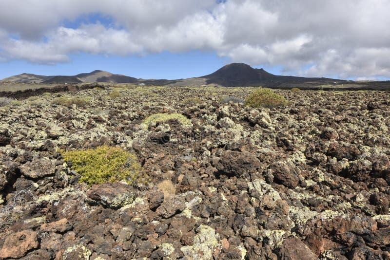Paisagem vulcânica estéril interessante de Lanzarote do norte, Ilhas Canárias, Espanha foto de stock royalty free