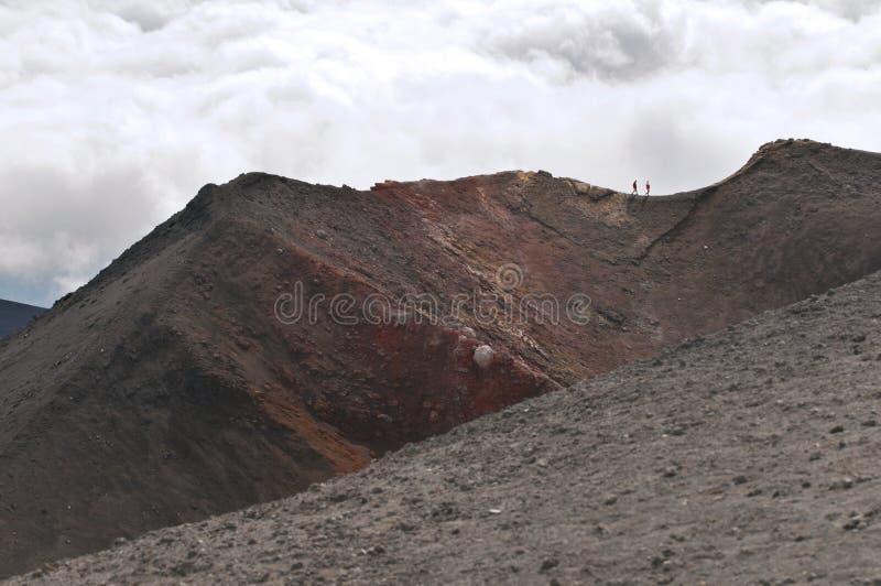 Paisagem vulcânica, montagem Etna, Sicília fotografia de stock