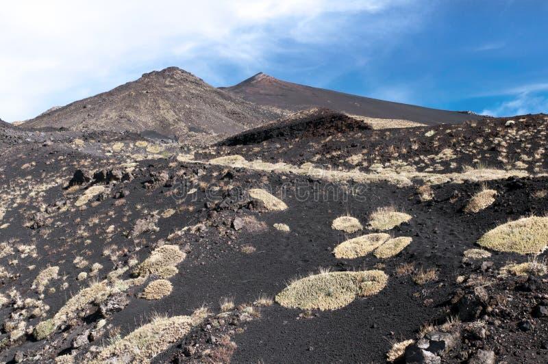 Paisagem vulcânica, montagem Etna, Sicília foto de stock