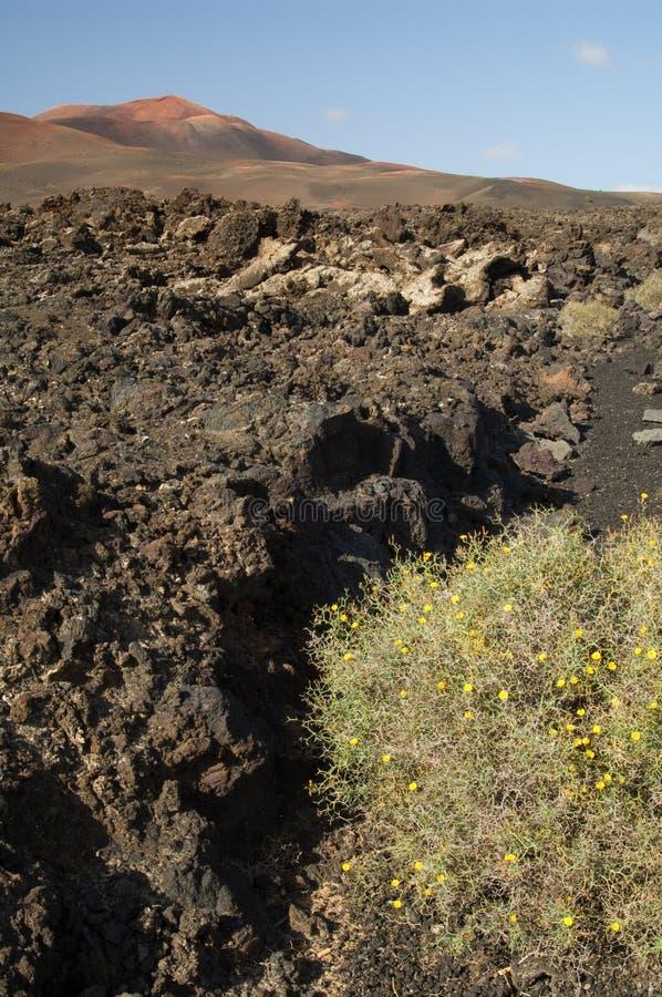 Paisagem vulcânica no parque nacional de Timanfaya fotos de stock