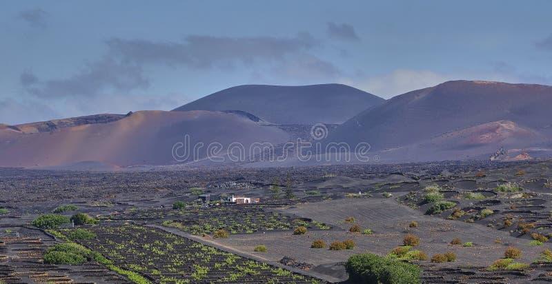 Paisagem vulc?nica no parque nacional de Timanfaya na ilha de Lanzarote imagens de stock royalty free