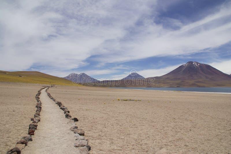 Paisagens de Andes do vulcão no deserto do atakama do pimentão fotografia de stock