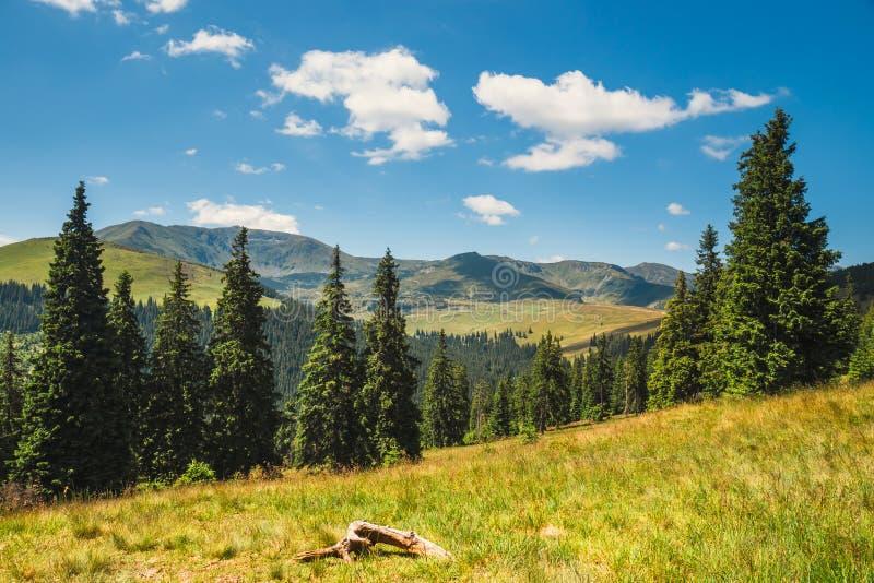 Paisagens de montanhas de Rodna em carpathians orientais, romania imagens de stock