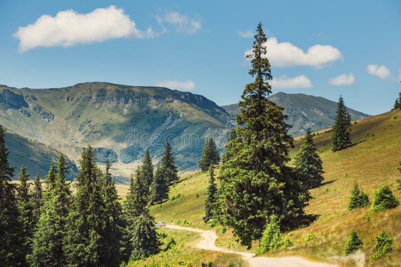 Paisagens de montanhas de Rodna em carpathians orientais, romania fotografia de stock