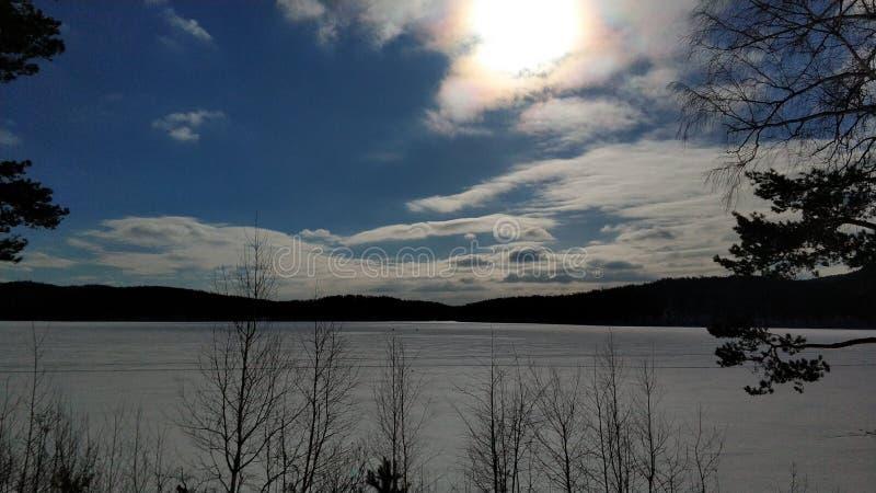 Paisagens do inverno nas árvores de floresta de Ural em um dia ensolarado Arakul shihan imagens de stock