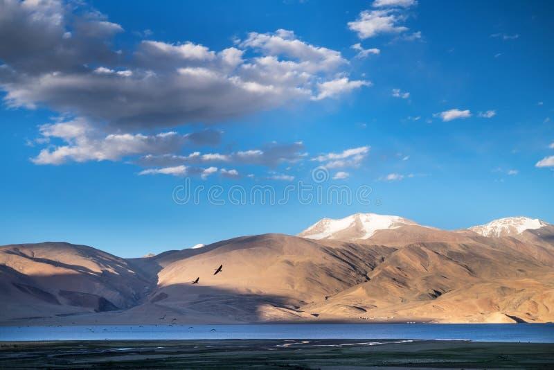 Paisagens do país da Índia Montanhas durante um por do sol ou um nascer do sol com sol dourado Himalayas que surpreendem vistas H fotografia de stock royalty free