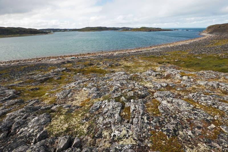 Paisaje ártico del verano hermoso con la bahía. Mar de Barents fotografía de archivo