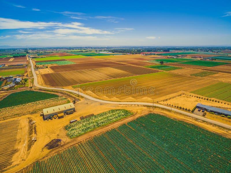 Paisaje aéreo de los campos de la cosecha fotografía de archivo libre de regalías