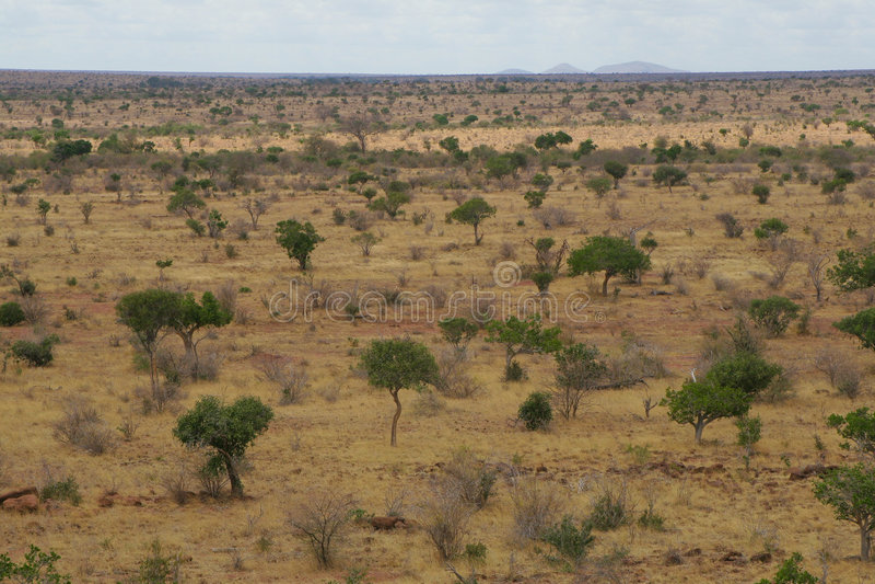 Paisaje africano fotos de archivo