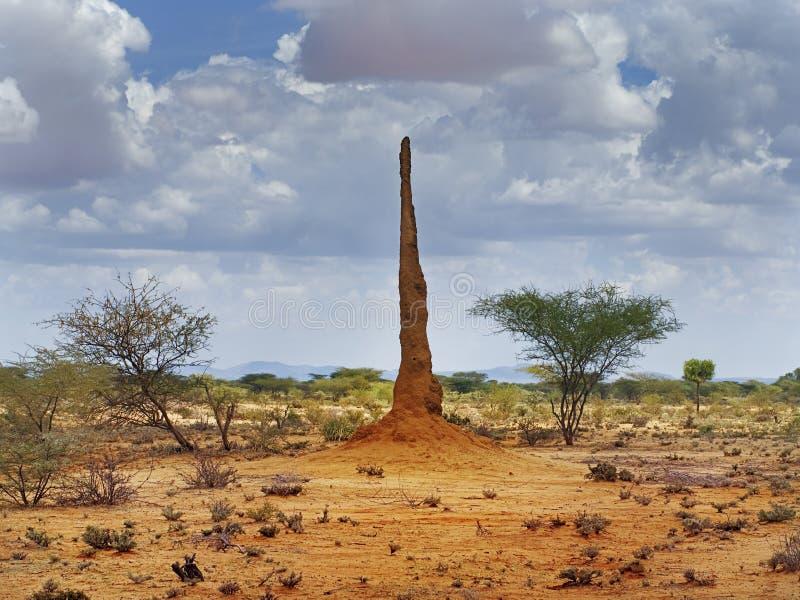 Paisaje africano con termitary foto de archivo libre de regalías