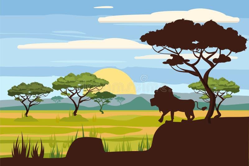 Paisaje africano, león, sabana, puesta del sol, vector, ejemplo, estilo de la historieta, aislado ilustración del vector