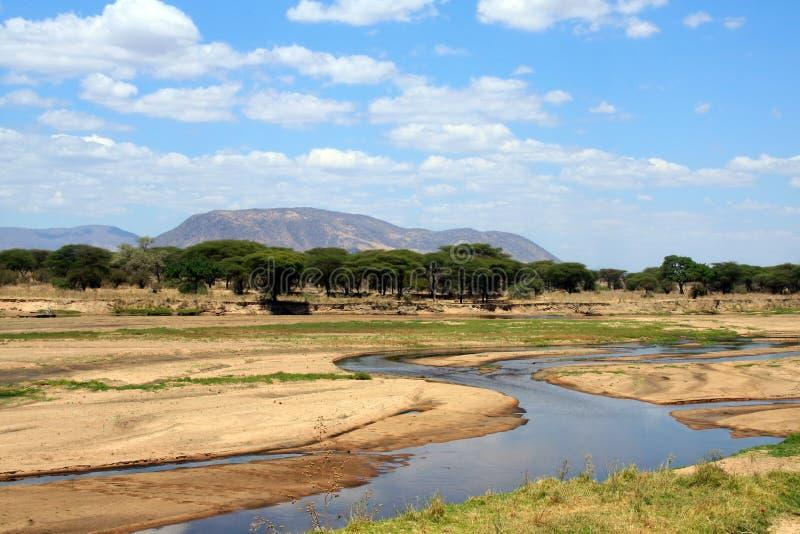 Paisaje africano: Río de Ruaha en la estación seca foto de archivo libre de regalías