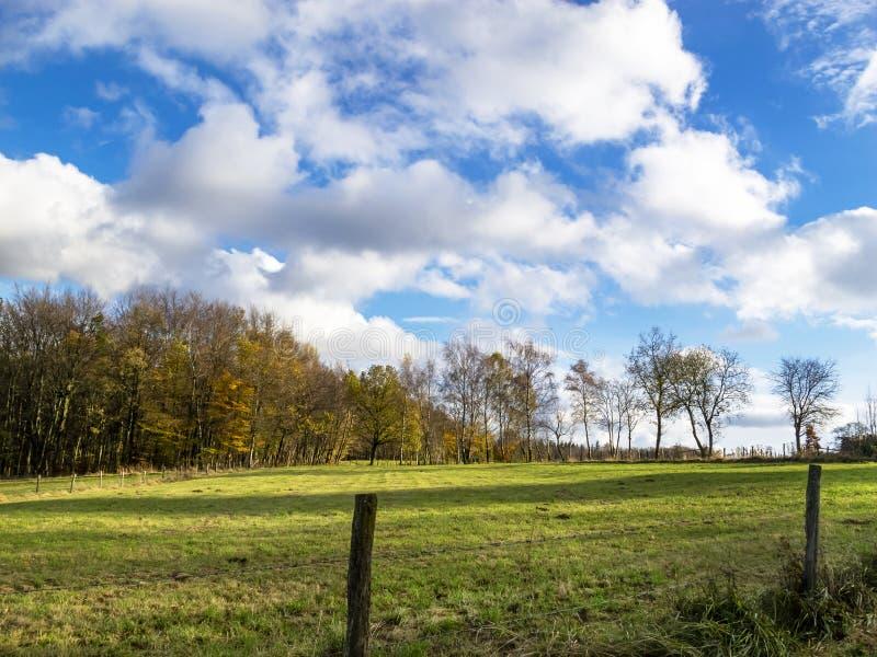 Paisaje agrícola belga en un día soleado de noviembre imagen de archivo libre de regalías