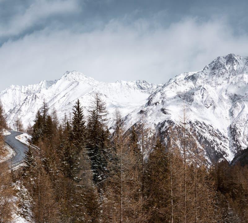 Paisaje alpestre del invierno Bosque, camino de la montaña y altas montañas coronadas de nieve imágenes de archivo libres de regalías