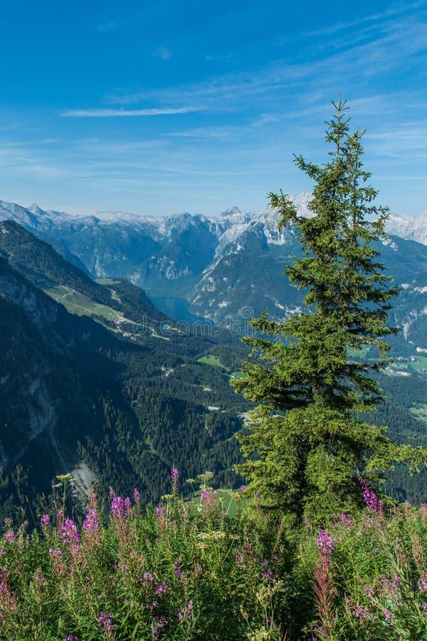 Paisaje alpino alemán con Königsee en el valle fotos de archivo