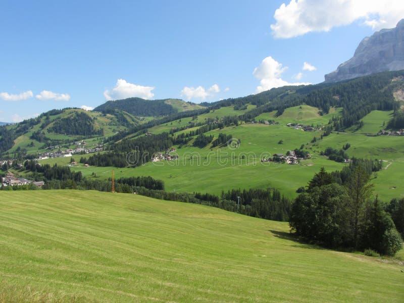 Paisaje alpino con los pastos y los abetos verdes contra las dolomías italianas en el verano Visión desde el pueblo del chalet de fotos de archivo libres de regalías