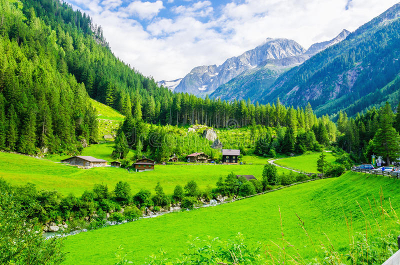 Paisaje alpino con los prados verdes, montañas, Austria fotos de archivo