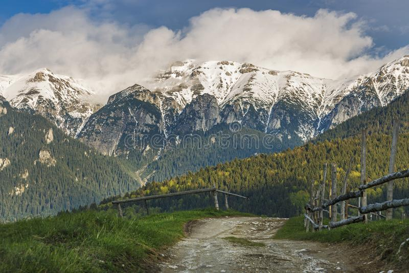 Paisaje alpino de la primavera con los campos verdes y las altas montañas nevosas, salvado, Transilvania imagenes de archivo