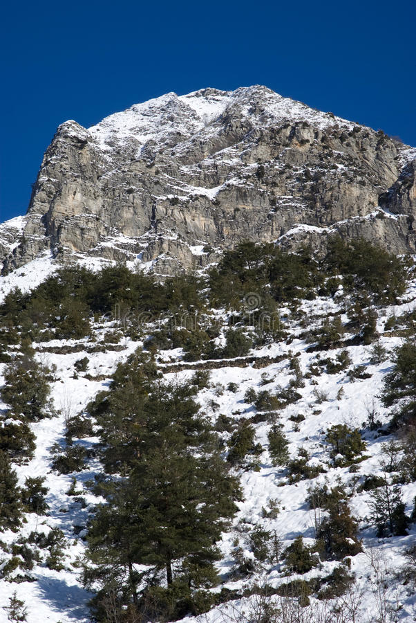 Paisaje alpino del invierno imagen de archivo