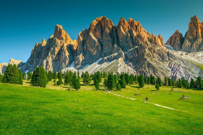 Paisaje alpino del verano fantástico con los altos acantilados, dolomías, Italia foto de archivo