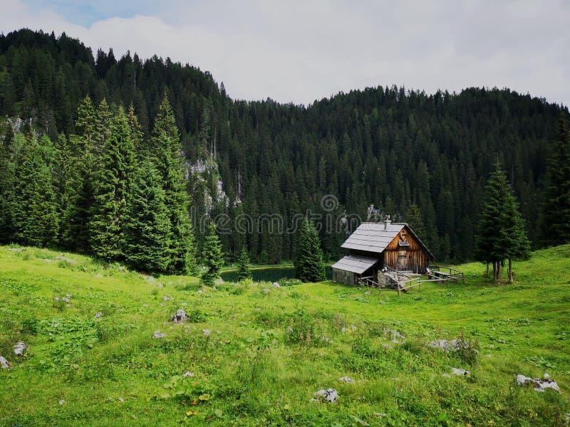 Paisaje alpino hermoso y pacífico en Eslovenia fotografía de archivo