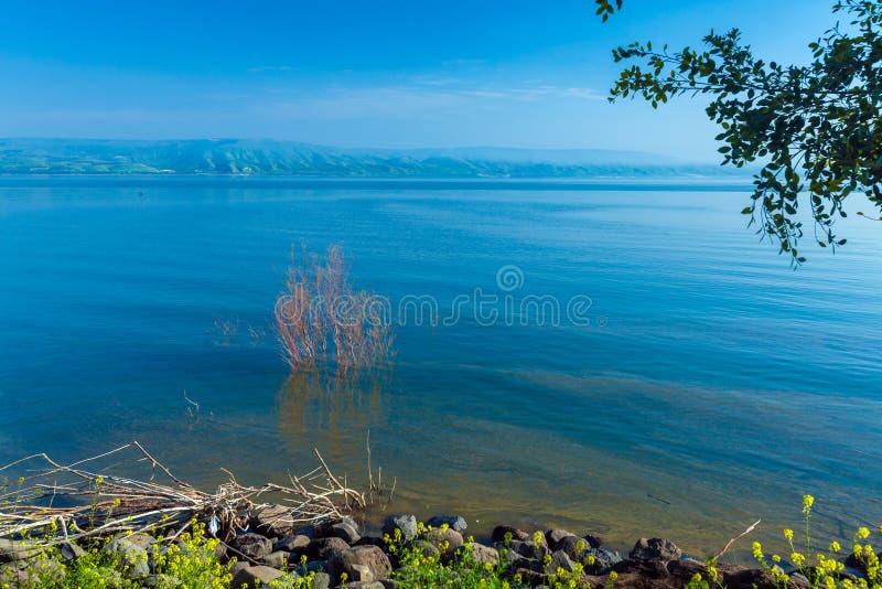 Paisaje alrededor del mar de Galilea - lago Kinneret imágenes de archivo libres de regalías