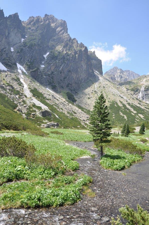 Paisaje alto Tatras de la montaña imagen de archivo