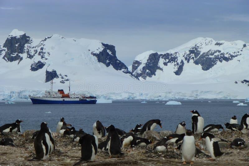 Paisaje antártico con los pingüinos y la nave expedicionaria imagen de archivo
