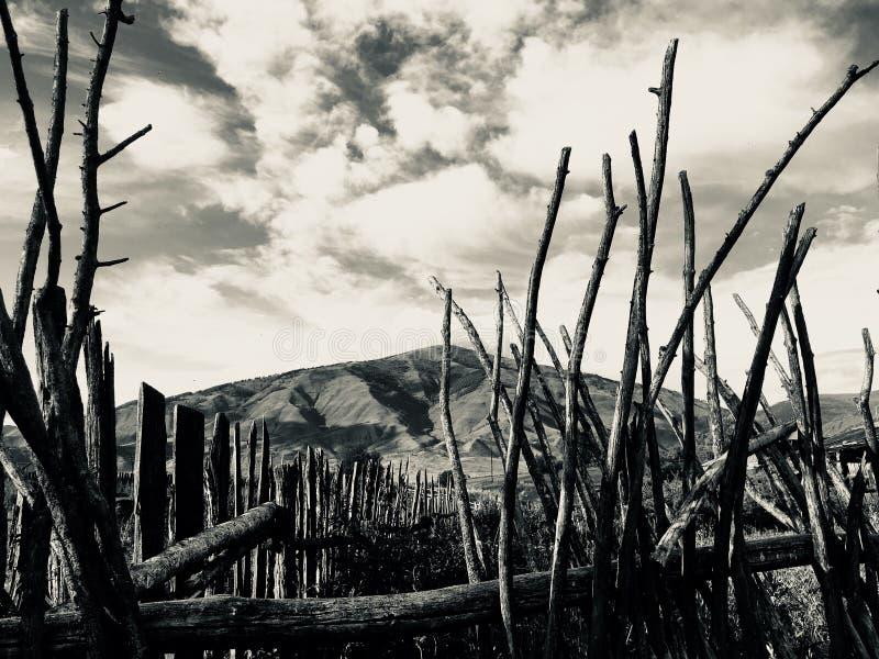 Paisaje apocalíptico fotos de archivo libres de regalías