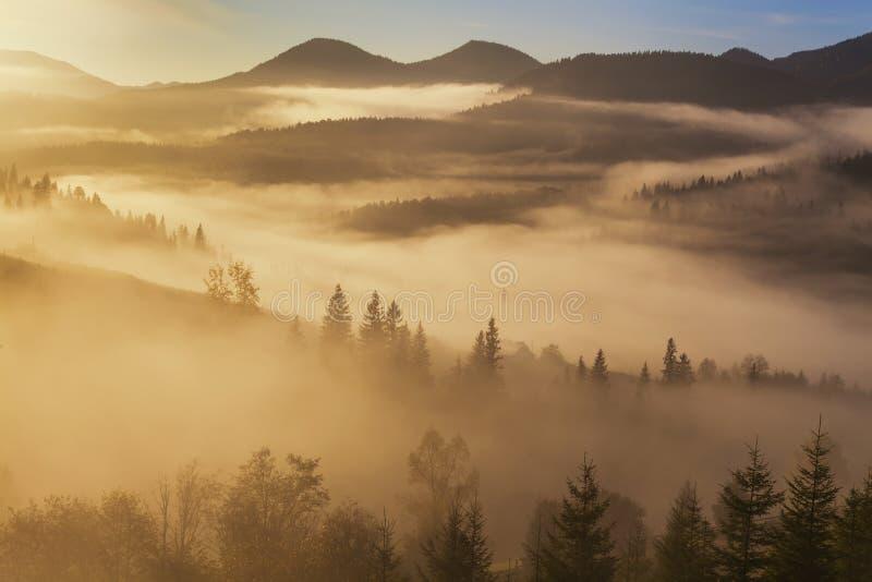 Paisaje asombroso de la montaña con niebla densa fotos de archivo