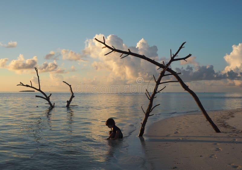 Paisaje asombroso de una playa en Maldivas foto de archivo