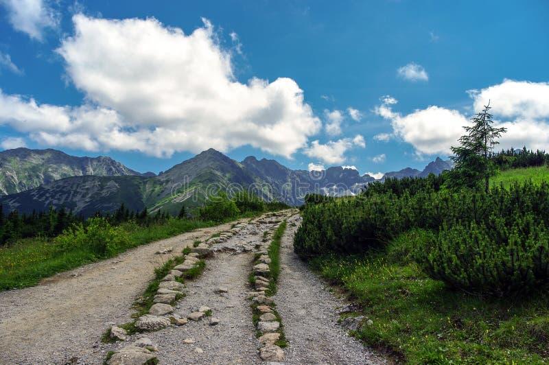 Paisaje asombroso del verano de un rastro en el alto Tatras polonia fotografía de archivo libre de regalías