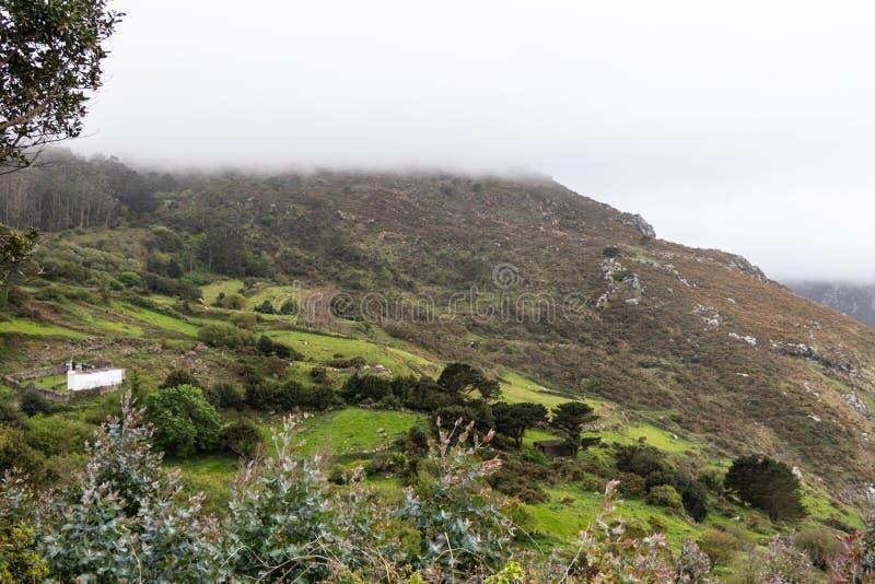 Paisaje atlántico delante del mar de bosques, de pastos y de una ermita en un Coruña, Galicia, España foto de archivo