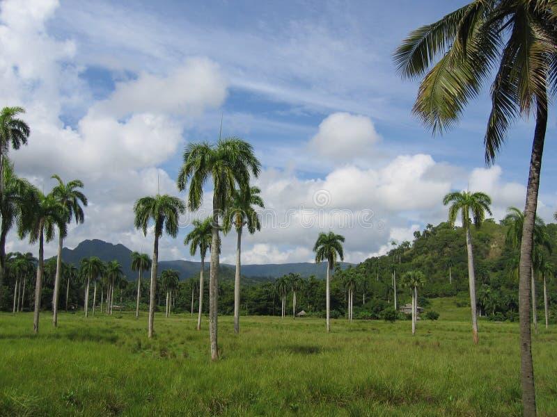 Paisaje Baracoa, Cuba foto de archivo