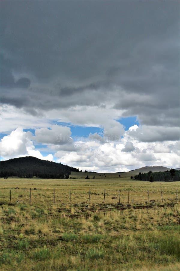 Paisaje blanco de la reserva de Apache de las montañas, Arizona, Estados Unidos imagenes de archivo