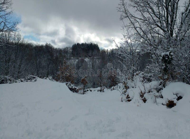 Paisaje blanco increíble del invierno fotos de archivo libres de regalías