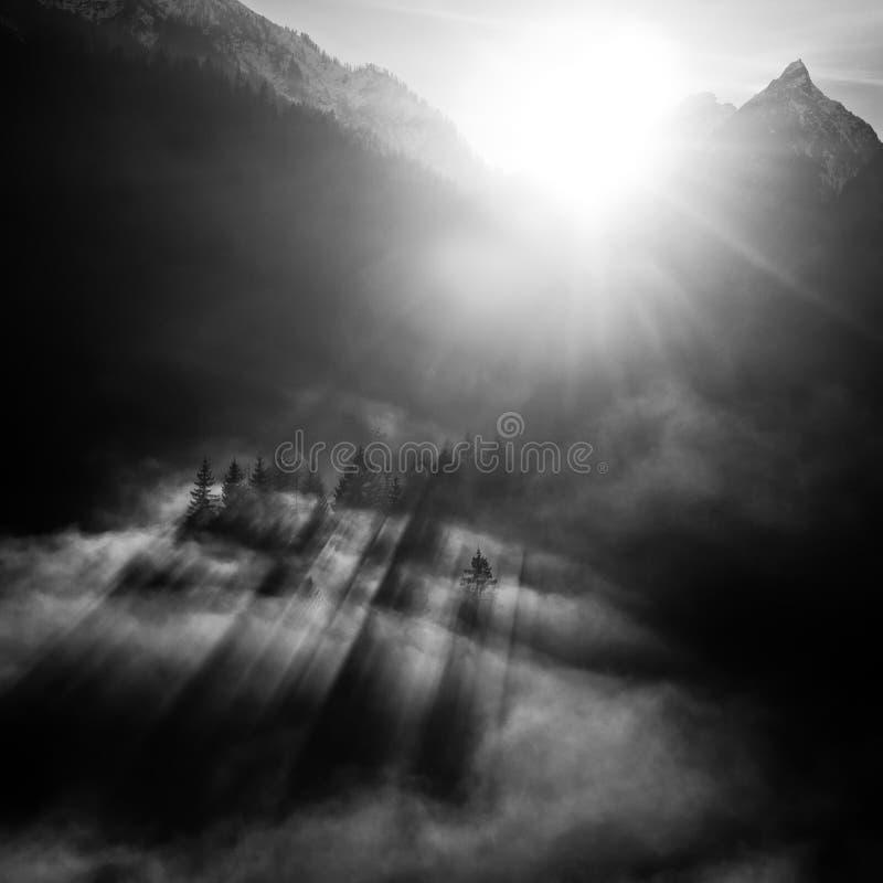 Paisaje blanco y negro de la montaña fotos de archivo