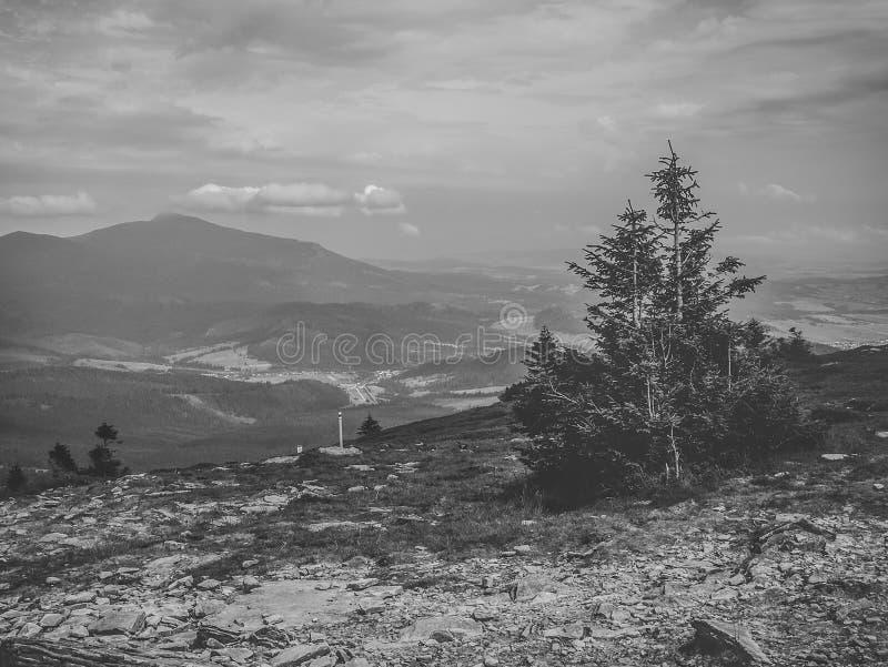 Paisaje blanco y negro desde arriba de la montaña de Pilsko en Polonia, una vista de la montaña de Babia Góra imagen de archivo libre de regalías