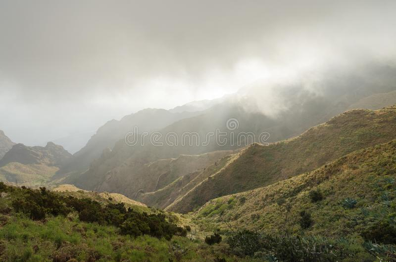 Paisaje brumoso en los barrancos de Tenerife, Tenerife, islas Canarias, S imagen de archivo