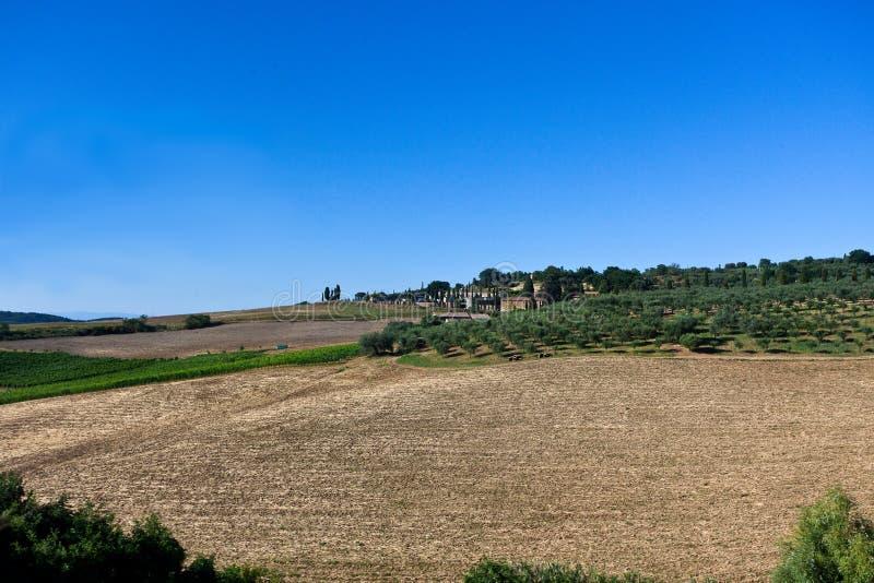Paisaje Buonconvento Val d 'Orcia, Toscana, Toscana, Italia, Italia fotos de archivo libres de regalías