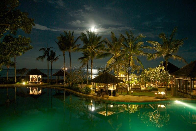 Paisaje caprichoso con la luna sobre las palmeras foto de archivo