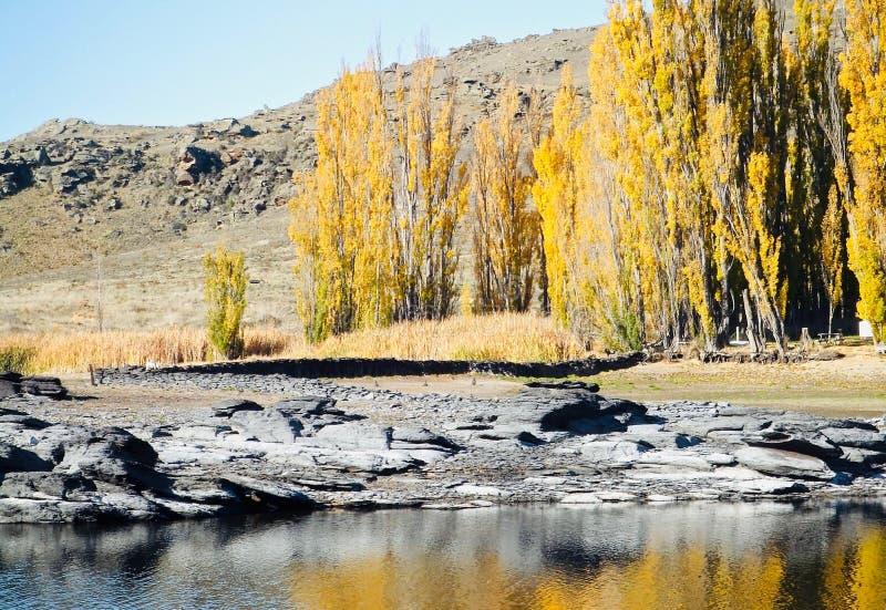 Paisaje central de Otago en verano con las rocas imagen de archivo