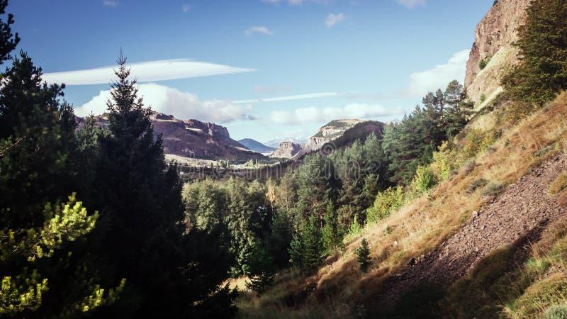 Paisaje cerca de Coyhaique en Patagonia chilena El bosque y las montañas de un DES se extienden imagen de archivo