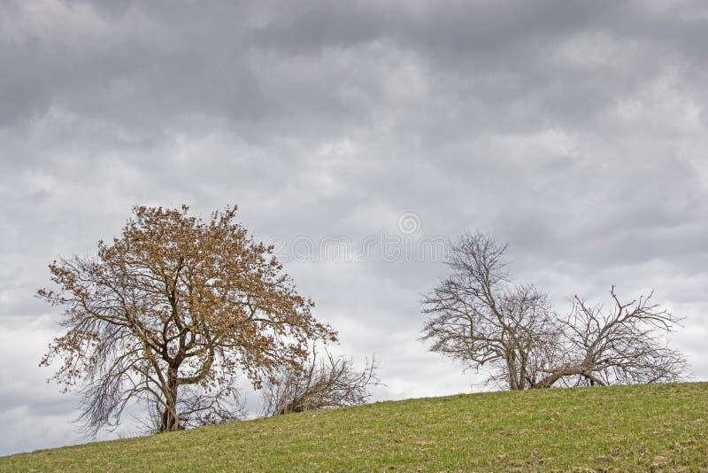 Paisaje cerca de Murnau en Baviera superior imagenes de archivo