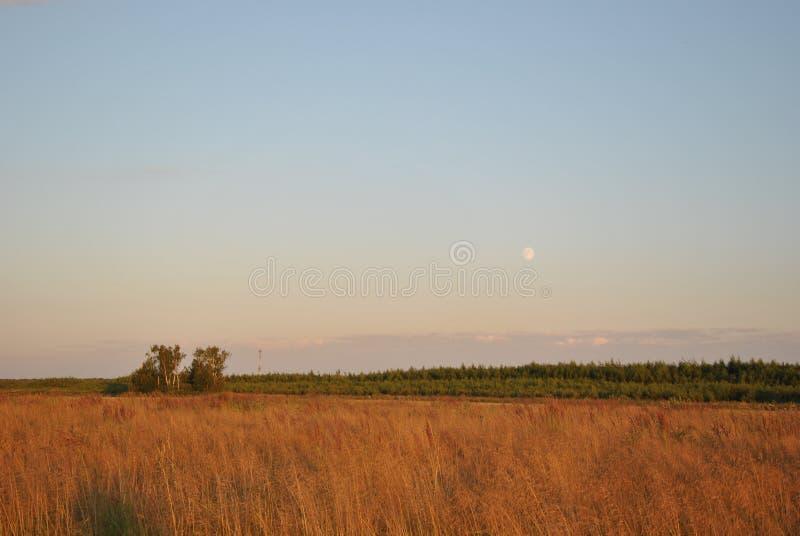 Paisaje, cielo azul y luna imagen de archivo libre de regalías