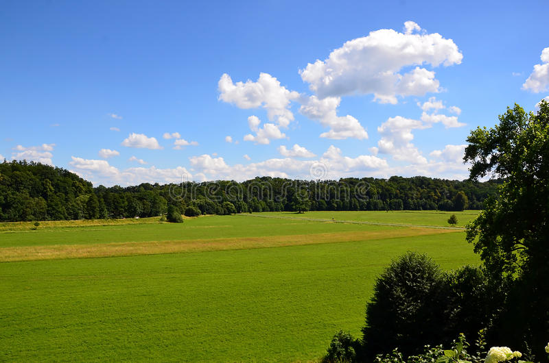 Paisaje colorido con el campo y cielo y árbol imágenes de archivo libres de regalías